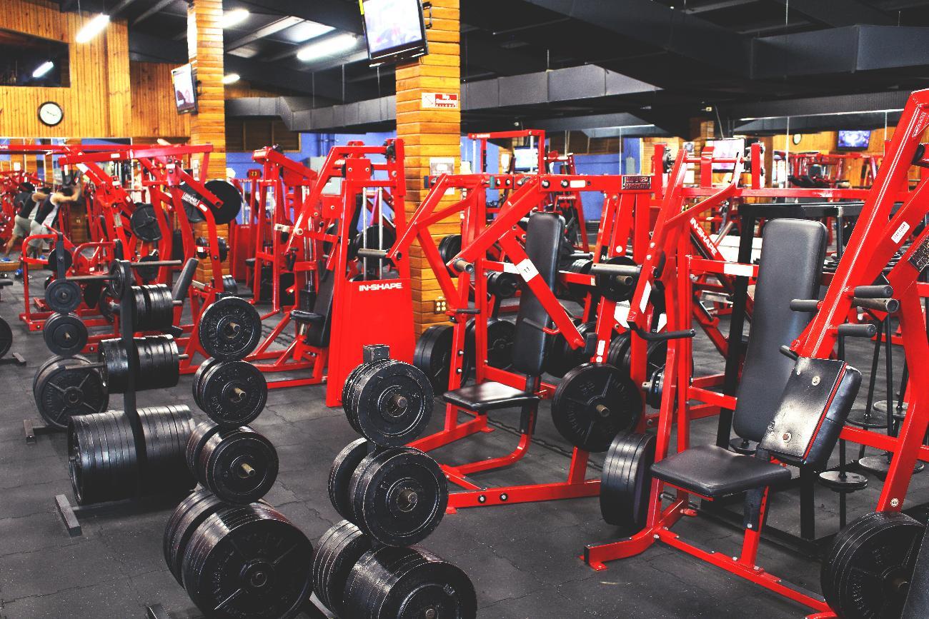 AMCOL Gym 8