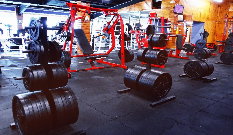 Barbell Plates on Rack